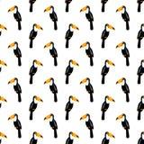 Toucan seamless pattern. Tropical summer illustration. Stock Photo