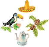Toucan sitting on a branch , sombrero,  coffee. Beans, coffeepot illustrations Royalty Free Stock Photography