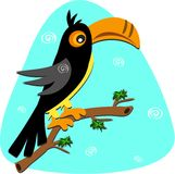 Toucan with Spirals Stock Image
