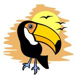 Toucan and sun Royalty Free Stock Photography
