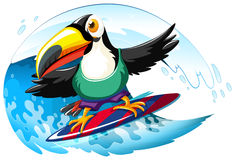 Toucan on surfboard in the giant wave Royalty Free Stock Photo