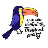 Toucan lettering vector illustration stock illustration