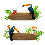 Toucan 2 Tropical Rainforest Banners Royalty Free Stock Images