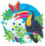 Toucan und Kreuzworträtsel Lizenzfreie Stockfotografie