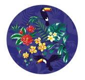 toucans ilustración del vector