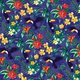toucans stock de ilustración