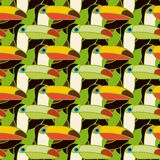 Toucans bird colorful seamless pattern Royalty Free Stock Image