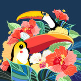 Toucans of paradise and plants Royalty Free Stock Photography