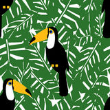 Toucans with tropical leaves seamless pattern. Green palm leaves background. Royalty Free Stock Photography