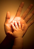 Touch. Hand touching hand of adult and newborn