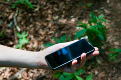 Touch screen phone in the woods Stock Photography