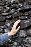 Touch the stone wall, nature touch Royalty Free Stock Image