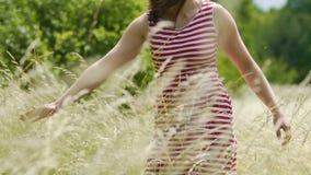 Touchant la culture de plein champ avec la main en automne de chute, la jeune femme sent le contact de la nature banque de vidéos