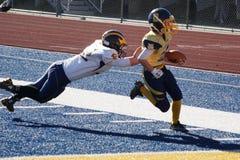 Touchdown ! photo libre de droits