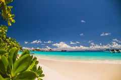 Touched tropical beach in similan island.  Stock Photo