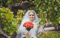 Touching beauty. Gentle bride in a beautiful Park Royalty Free Stock Images