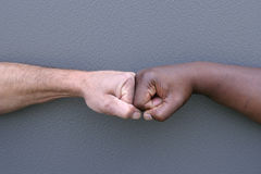 Touching fists. A white fist and a black fist touching to show unity Stock Photography