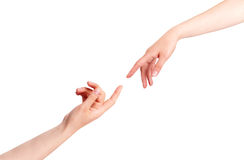 Touching Hands. On white background royalty free stock photo