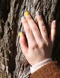 Woman's hand on the tree trunk Royalty Free Stock Photo