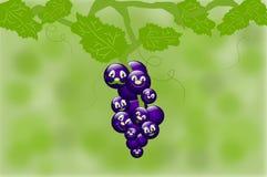 Touffe des raisins avec des visages Images libres de droits