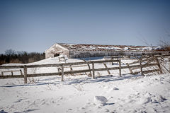 Tough Country Winter Royalty Free Stock Photo
