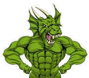Tough Dragon Mascot Stock Image