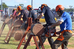 Tough men demonstrating chainsawing logs at country fair Royalty Free Stock Photos