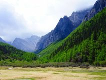 Tough mountains and forests Stock Images