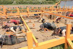 Tough Mudder 2015: Barbed Wire. Boughton House, Northamptonshire, UK - May 31, 2015: Participants crawl under barbed wire and through the Kiss of Mud obstacle at stock photo