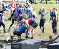 Tough Mudder 2015: Helping Hand. Boughton House, Northamptonshire, UK - May 30, 2015: Tough Mudders lend a hand at the Island Hopper obstacle at the Tough Mudder stock images