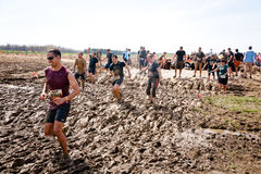 Tough Mudder: The Leader of the Pack Royalty Free Stock Photos