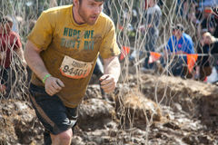 Tough Mudder: Racer in the Electric Obsticle Royalty Free Stock Photos