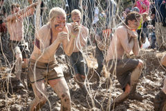 Tough Mudder: Racers in the Electric Obsticle Royalty Free Stock Photos
