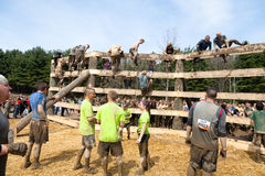 Tough Mudder: Racers Waiting to Climb the Wall Stock Image
