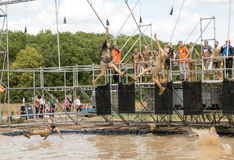 Tough Mudder 2015: Reaching for it Stock Image