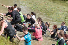 Tough Mudder 2015: Slipper Slope. Boughton House, Northamptonshire, UK - May 30, 2015: Tough Mudders lend a hand climbing the muddy slope out of the canal at the stock images