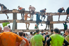 Tough Mudder: Wall Climb Challenge. Male and female racers climbing over an obstacle at the Tough Mudder competition in Mansfield Ohio on April 27, 2013. This royalty free stock photo
