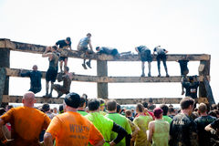 Tough Mudder: Wall Climb Challenge royalty free stock photography