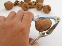 Free Tough Nut To Crack! Stock Photo - 252890