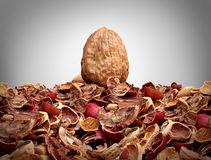 Tough Nut To Crack. Business concept as a solid hard closed walnut on top of a mountain of broken nut shells as a metaphor for difficulty solving a problem or Royalty Free Stock Photography
