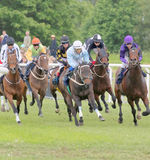 Tough race between race horses Royalty Free Stock Photos