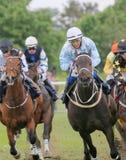 Tough race between the race horses Stock Photos