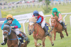 Tough race between three pony race horses Royalty Free Stock Image
