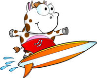 Tough Surfing Cow Vector Stock Photography