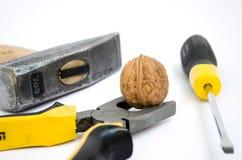 Toughie зажатый с плоскогубцами Стоковое Изображение RF