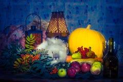 Toujours au jour du thanksgiving avec des légumes d'automne, fruit, pompe Images libres de droits