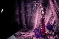 Toujours durée florale Image stock