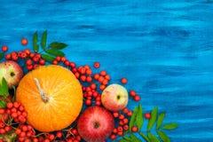 Toujours la vie automnale avec des potirons, des pommes et la sorbe Photos libres de droits