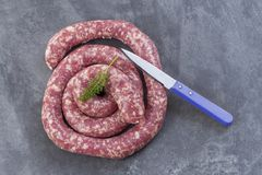 Toulouse sausage Raw `saucisse de toulouse` in ring french meat specialty from Toulouse on white Royalty Free Stock Image
