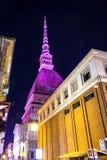A toupeira cor-de-rosa Antonelliana em Turin Foto de Stock